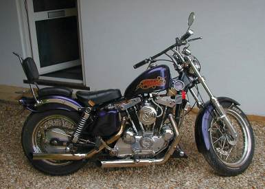 a New Forest IronHead Sportster